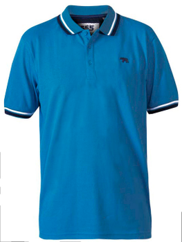 "Polo shirt ""Allante"" van merk D555 in de kleur royal blue, gemaakt van organic cotton."