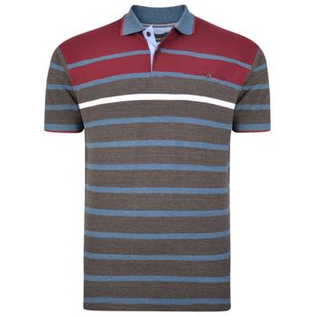 KAM Polo Jersey Stripe Burgundy -  - Melvinsi