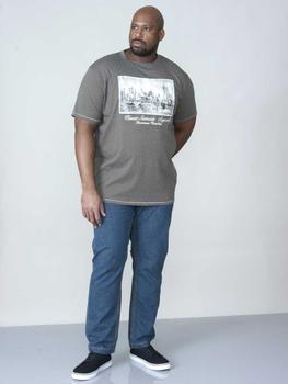 T-shirt met USA-New York print en geborduurde tekst van merk D555 in de kleur khaki, gemaakt van 100% katoen.