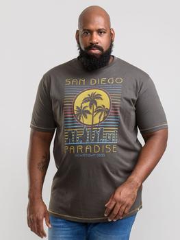 """T-Shirt """"Stanley"""" van merk D555 in de kleur khaki, gemaakt van 100% katoen."""